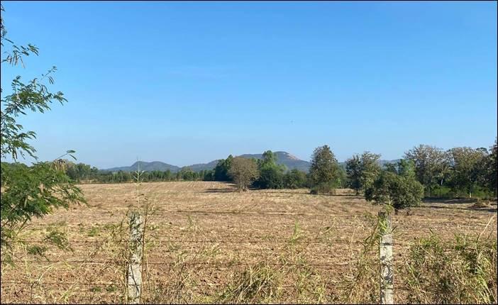 ขายที่ดิน ทำเลดี วิวสวย มองเห็นภูเขา ปากช่อง นครราชสีมา